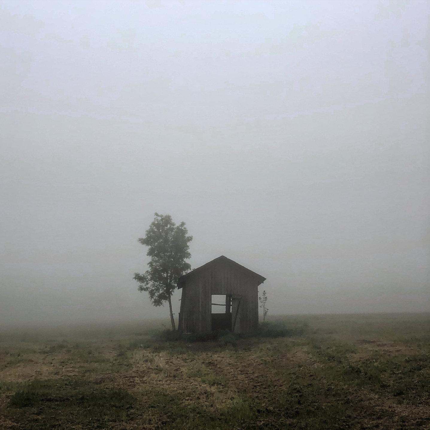 Brumes matinales - Vincent BOULLIER