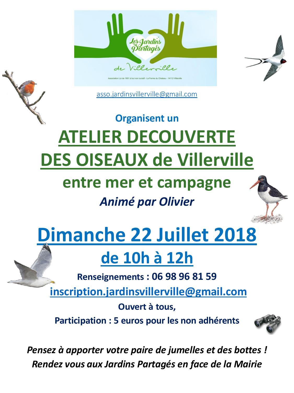 Atelier oiseaux 22 07 2018